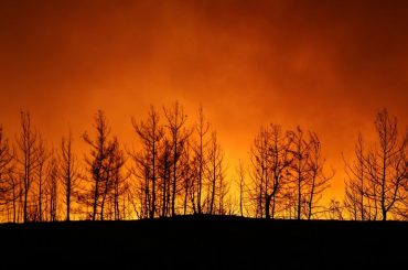 Turkish wildfire leaves charred home and ashes, as blazes continue
